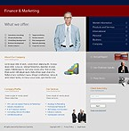 webdesign : company, professional, networking