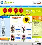 webdesign : birthday, packing, catalog