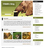 webdesign : visitors, blogroll, lion