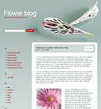 webdesign : composition, specials, chrysanthemum