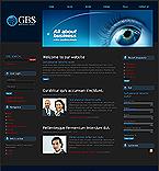 webdesign : success, researcher, internet