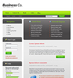 webdesign : company, approach, innovation