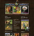 webdesign : hippopotamus, lion, sponsorship