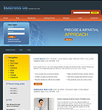 webdesign : professional, success, networking