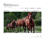 webdesign : photographer, company, models
