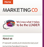 webdesign : business, contacts, team