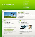 webdesign : company, finance, consulting