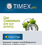 webdesign : timex, experience, professional