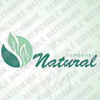 webdesign : natural, food, vegetarian