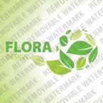 webdesign : arrangement, green, basket