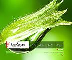 webdesign : shrub, services, technologies