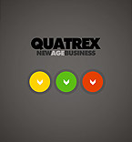 webdesign : quatrex, company, analytic