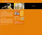 webdesign : Celtic, jewelry, collection