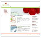 webdesign : design, artist, team