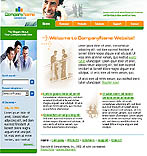 webdesign : approach, planning, consulting
