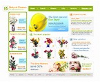 webdesign : flower, occasions, services