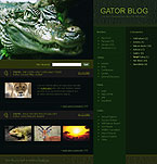 webdesign : events, nature, dolphin