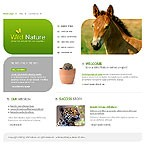webdesign : forest, lion, adoption