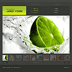 webdesign : portfolio, company, models