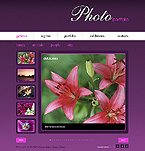 webdesign : pictures, prospect, great