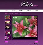 webdesign : illusion, portfolio, pictures