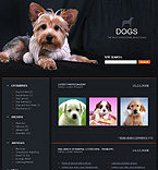 webdesign : nformation, discussion, breed