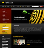 webdesign : management, success, researcher