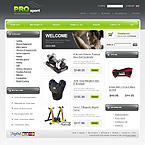 webdesign : pro, pool, winter