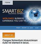 webdesign : smartbiz, enterprise, intern
