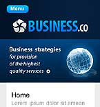 webdesign : business, company, partner