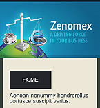 webdesign : zenomex, marketing, internet