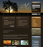 webdesign : projects, offers, price