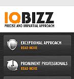 webdesign : IQ, experience, partner