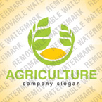 webdesign : agriculture, field, information