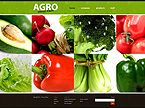 webdesign : combine, equipment, information