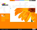 webdesign : colorex, photography, models