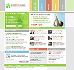 webdesign : company, experience, project