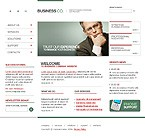 webdesign : management, consulting, money